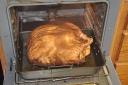 turkeyday-2008-11-27c.jpg