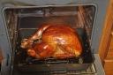 turkeyday-2008-11-27m.jpg