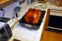 turkeyday-2008-11-27p.jpg
