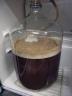 beerfermenting-2009-05-18b.jpg