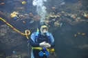 steinhart-2009-10-26-diverrick.jpg