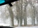 snowing3.jpg