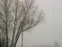 snowing4.jpg