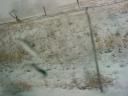 snowing6.jpg